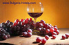 Russian Interest in Wine Tourism in Bulgaria Grows