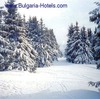 Bulgaria's neighbours to enjoy skiing resorts