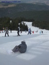 Artificial snow in Borovets skiing resort compensates for the lack of real one /