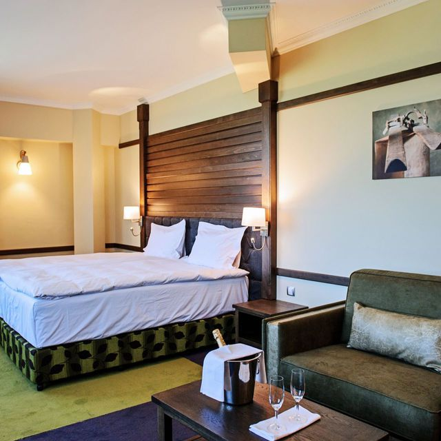 Hot Springs Medical & SPA - Double Executive Room