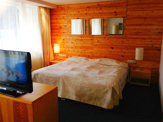 Hotel Festa Chamkoria - Junior suite