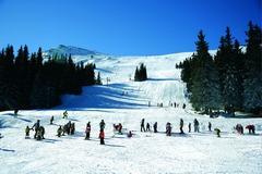 Aleko Ski Area