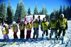 Vitosha Child Group